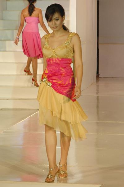 Myanmar Model_02
